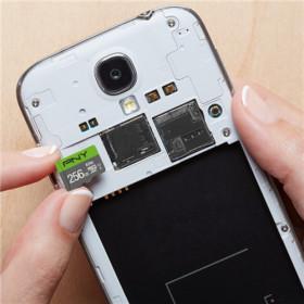 PNY Elite memoria flash 256 GB MicroSDXC Classe 10 UHS-I