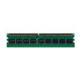 HP 256MB DDR2-533 memoria 0,25 GB 533 MHz Data Integrity Check (verifica integrita dati)